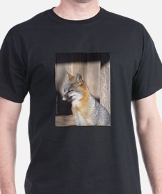 Sleepy Gray Fox T-Shirt