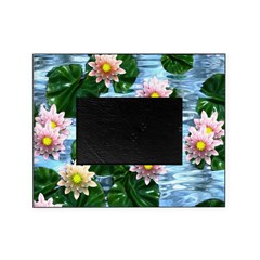 Waterlily reflections Picture Frame