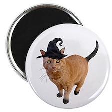 """Orange Witch Cat 2.25"""" Magnet (10 pack)"""
