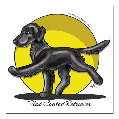 Flat Coated Retriever Illustration Square Car Magn