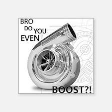 Bro do you even boost Sticker