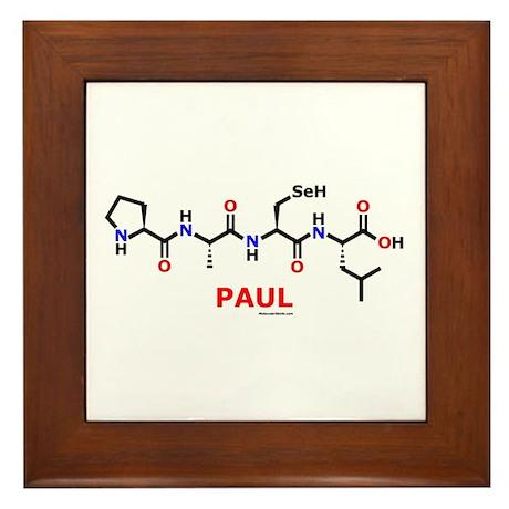 Paul molecularshirts.com Framed Tile
