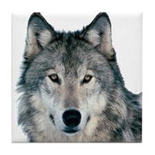 Timber Wolf - White Wolf Tile Coaster