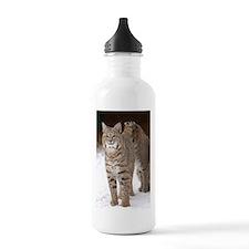 bobcats Water Bottle