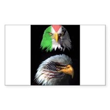 Eagles of USA & Palestine Solidarity Eagle Decal