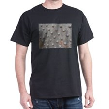 Riveting T-Shirt