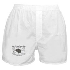 Atlas of a great danes brain Boxer Shorts