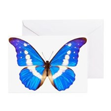 Blue Butterfly Greeting Cards (Pk of 10)