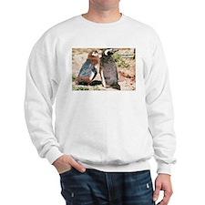 Magellanic Penguins Sweatshirt