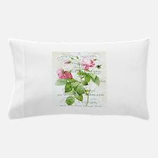 Vintage French Botanical pink rose Pillow Case