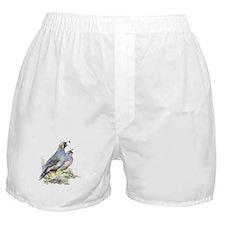 Watercolor California Quail Bird Boxer Shorts
