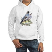 Watercolor California Quail Bird Jumper Hoody