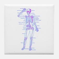 Red Blue Skeleton Body Diagram Tile Coaster