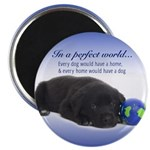 """In A Perfect World (Lab) 2.25"""" Magnet (100 pa"""