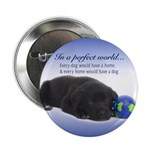 """In A Perfect World (Lab) 2.25"""" Button (10 pac"""