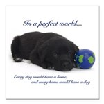 In A Perfect World (Lab) Square Car Magnet 3