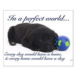 In A Perfect World (Lab) Small Poster