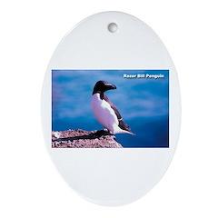 Razor Bill Penguin Oval Ornament