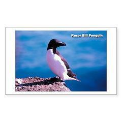 Razor Bill Penguin Rectangle Decal