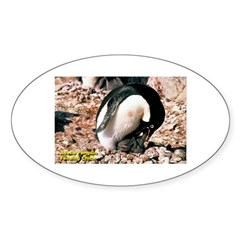 Adelie Penguin Oval Decal