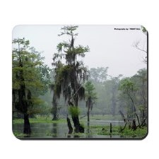 Swamp Bayou Mousepad