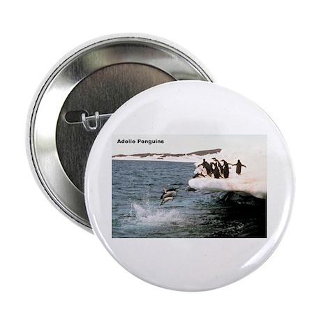 "Adelie Penguins 2.25"" Button (10 pack)"