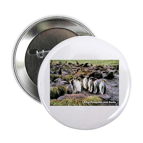 King Penguins Button