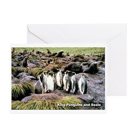 King Penguins Greeting Cards (Pk of 10)