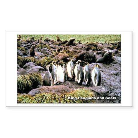 King Penguins Rectangle Sticker