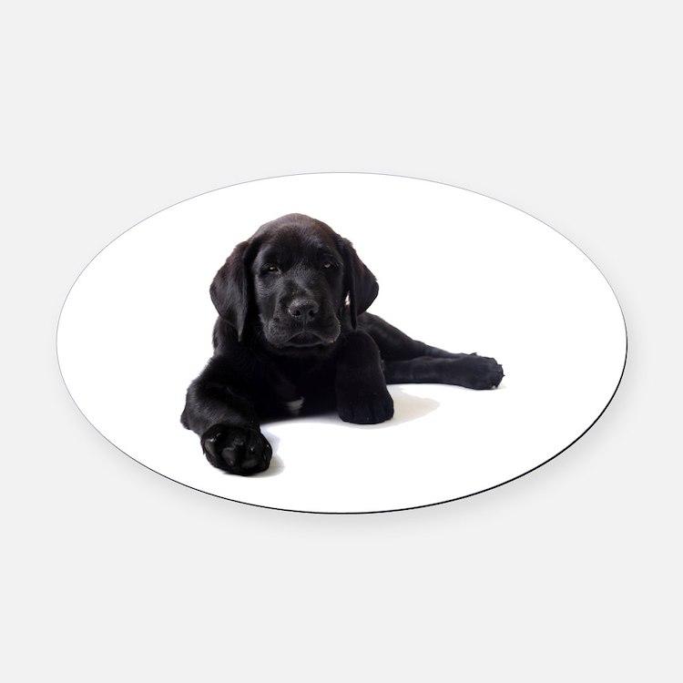 Labrador Retriever Oval Car Magnet