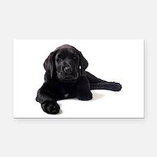 Labrador Retriever Rectangle Car Magnet