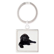 Labrador Retriever Square Keychain