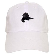 Labrador Retriever Baseball Cap