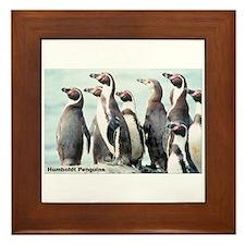 Humboldt Penguins Framed Tile