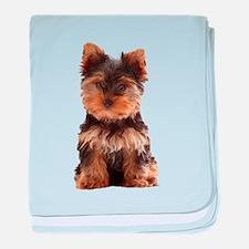 Yorkie baby blanket