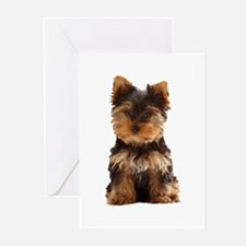 Yorkie Greeting Cards (Pk of 20)