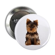 "Yorkie 2.25"" Button (10 pack)"