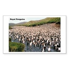 Royal Penguins Rectangle Decal