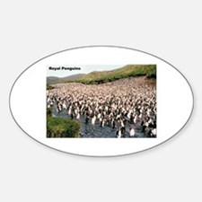 Royal Penguins Oval Decal