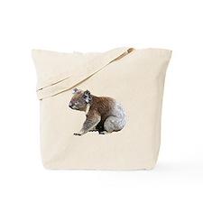 Australian Koala Photograph Tote Bag