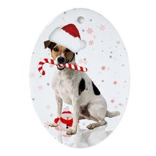Jack Russell Dog Winter Holiday Ornament (Oval)
