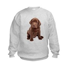 Chocolate Labrador Puppy Sweatshirt