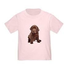 Chocolate Labrador Puppy T