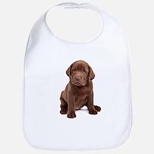 Chocolate Labrador Puppy Bib