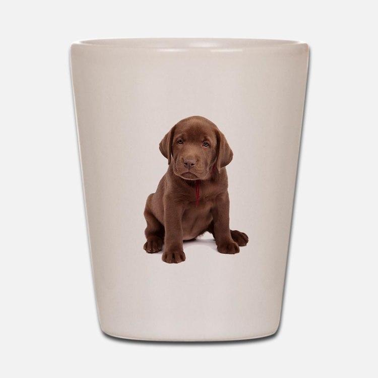 Chocolate Labrador Puppy Shot Glass