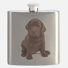 Chocolate Labrador Puppy Flask