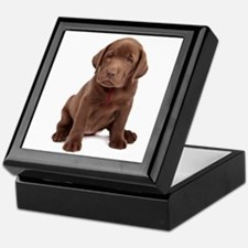 Chocolate Labrador Puppy Keepsake Box