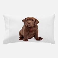 Chocolate Labrador Puppy Pillow Case