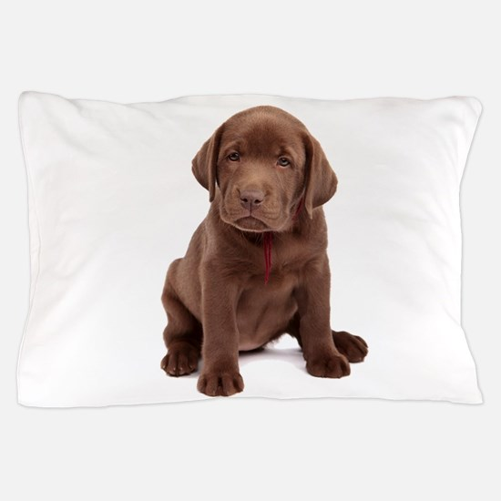 Chocolate Labrador Puppy Pillow Case
