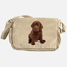 Chocolate Labrador Puppy Messenger Bag